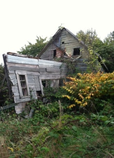 Abandon house in our field